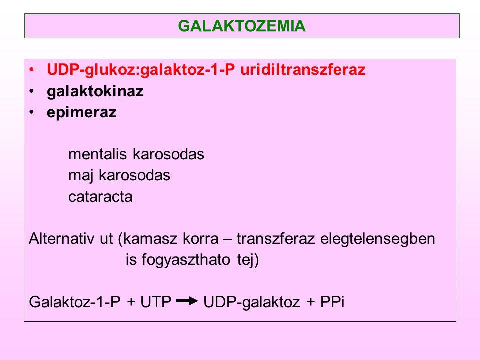GALAKTOZEMIA UDP-glukoz:galaktoz-1-P uridiltranszferaz. galaktokinaz. epimeraz. mentalis karosodas.