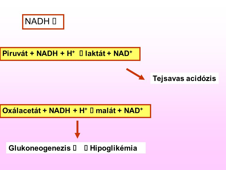 NADH é Piruvát + NADH + H+ à laktát + NAD+ Tejsavas acidózis