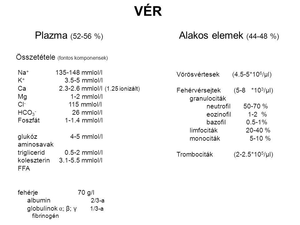 VÉR Plazma (52-56 %) Alakos elemek (44-48 %)