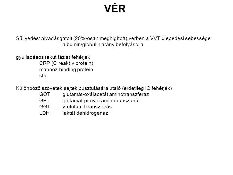 VÉR Sűllyedés: alvadásgátolt (20%-osan meghigított) vérben a VVT ülepedési sebessége. albumin/globulin arány befolyásolja.