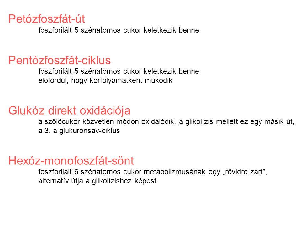 Pentózfoszfát-ciklus