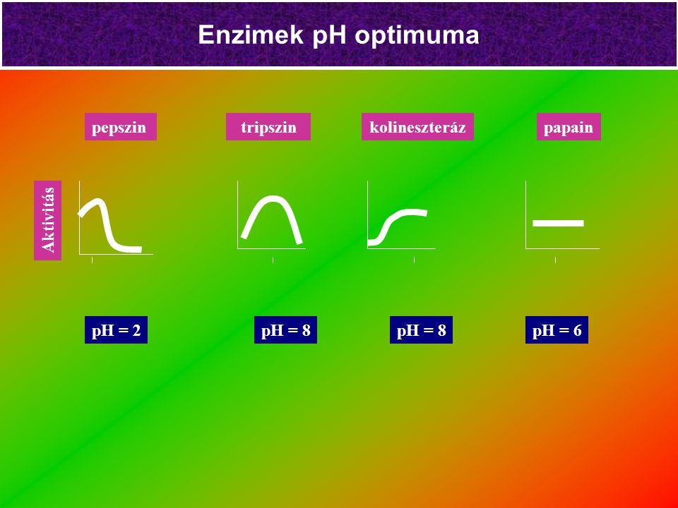 Enzimek pH optimuma pepszin tripszin kolineszteráz papain Aktivitás