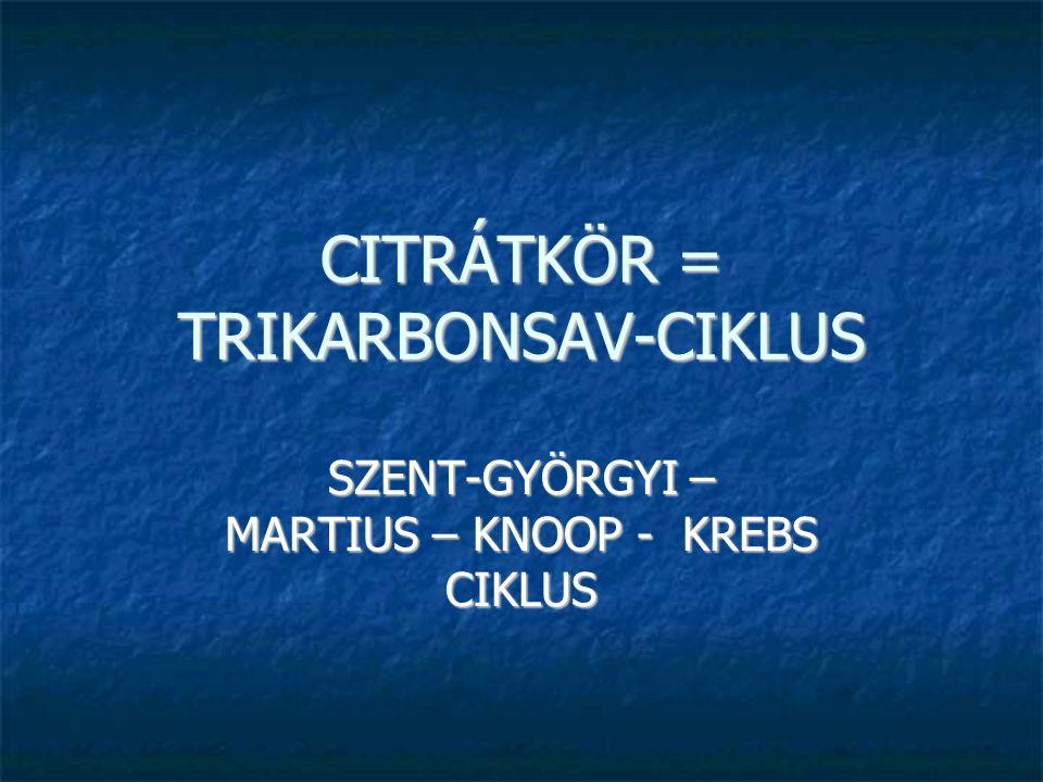 CITRÁTKÖR = TRIKARBONSAV-CIKLUS