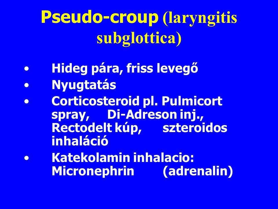 Pseudo-croup (laryngitis subglottica)