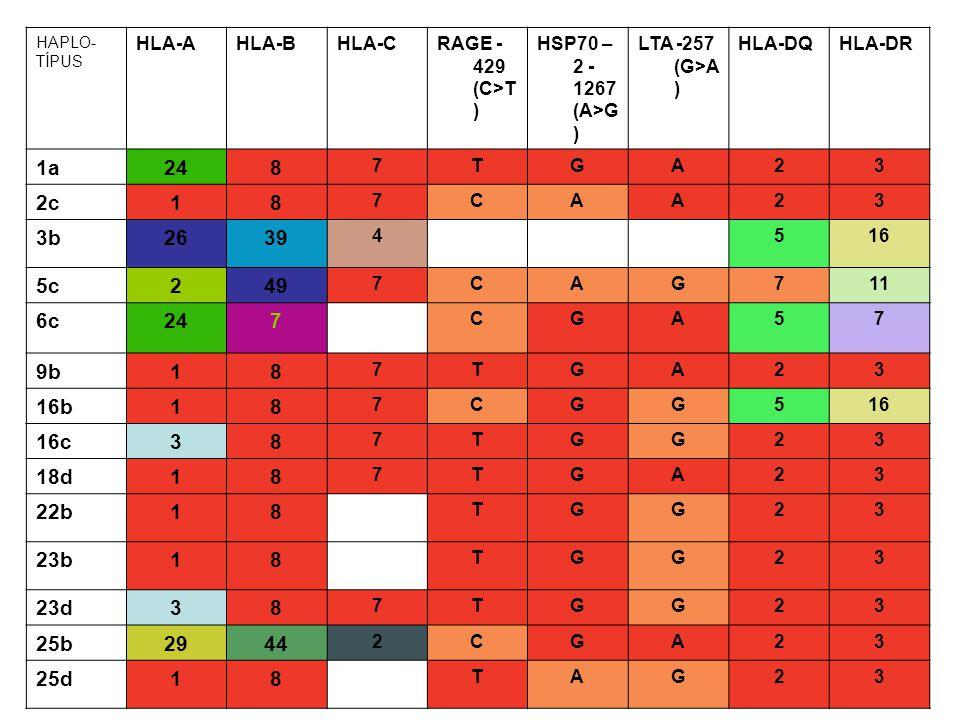 HAPLO-TÍPUS HLA-A. HLA-B. HLA-C. RAGE -429 (C>T) HSP70 –2 -1267 (A>G) LTA -257 (G>A) HLA-DQ. HLA-DR.