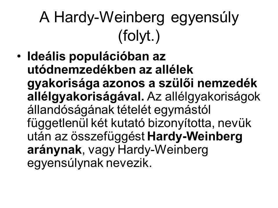 A Hardy-Weinberg egyensúly (folyt.)