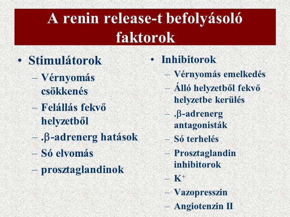 A renin release-t befolyásoló faktorok