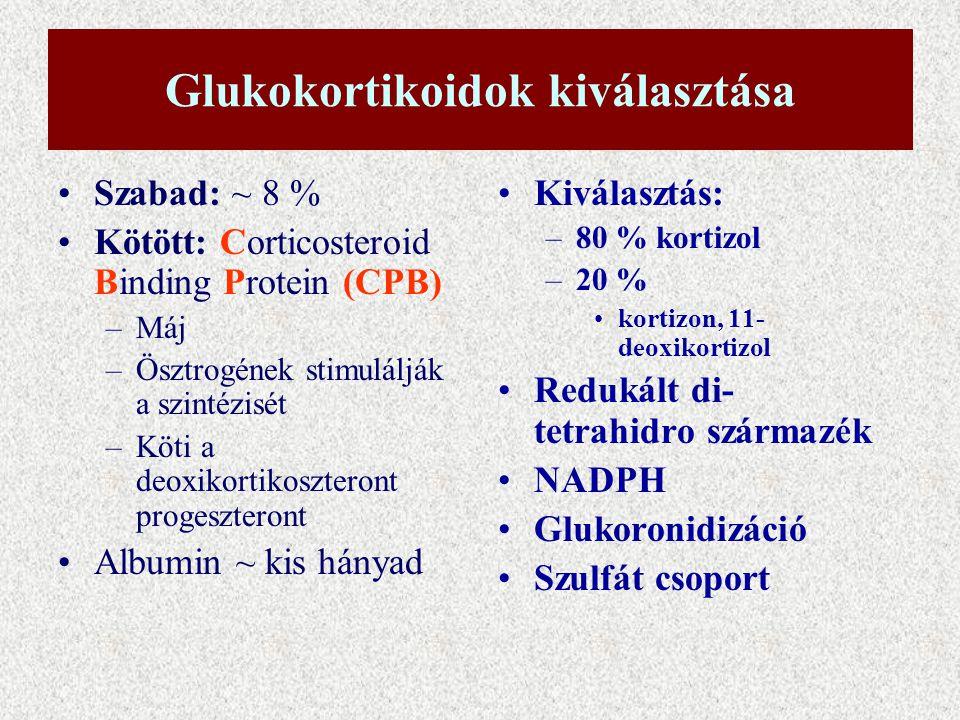 Glukokortikoidok kiválasztása