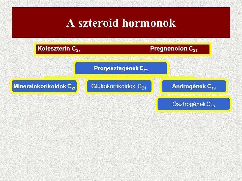A szteroid hormonok Koleszterin C27 Pregnenolon C21
