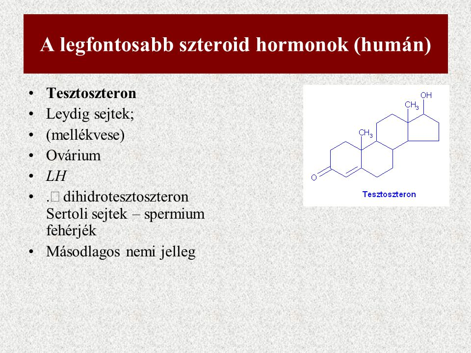 A legfontosabb szteroid hormonok (humán)