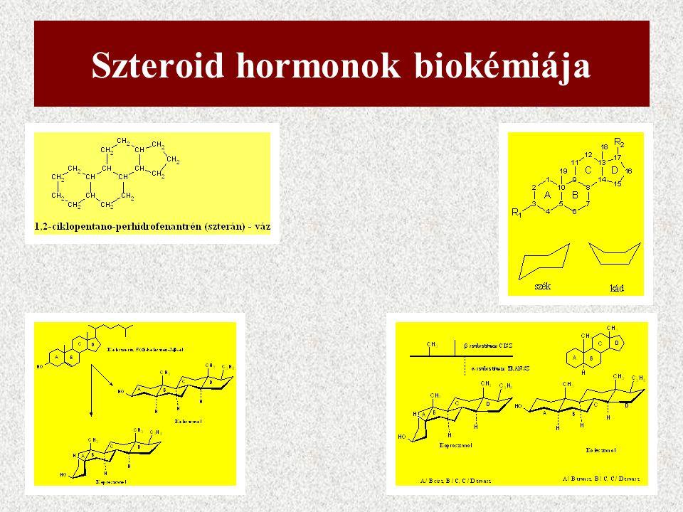 Szteroid hormonok biokémiája