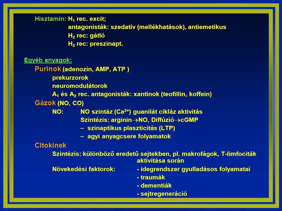 Hisztamin: H1 rec. excit;