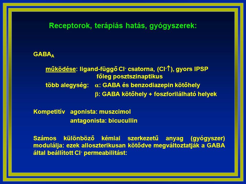 Receptorok, terápiás hatás, gyógyszerek:
