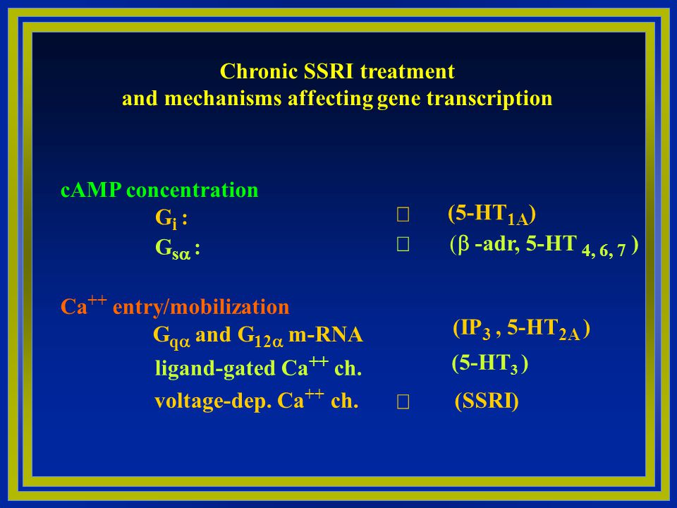 Chronic SSRI treatment and mechanisms affecting gene transcription
