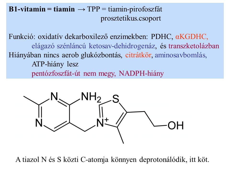 B1-vitamin = tiamin → TPP = tiamin-pirofoszfát prosztetikus.csoport