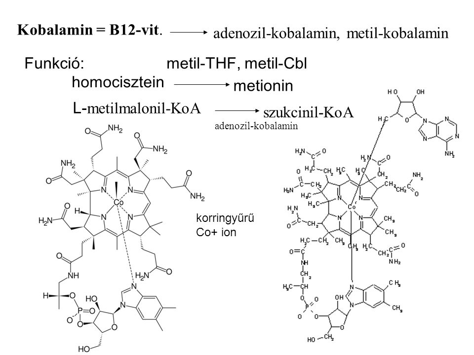 adenozil-kobalamin, metil-kobalamin