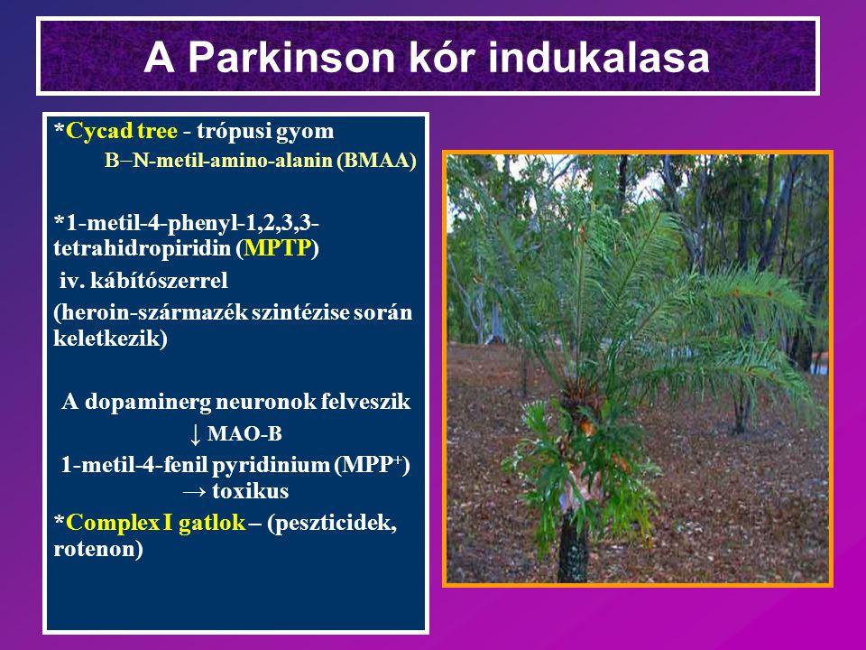A Parkinson kór indukalasa