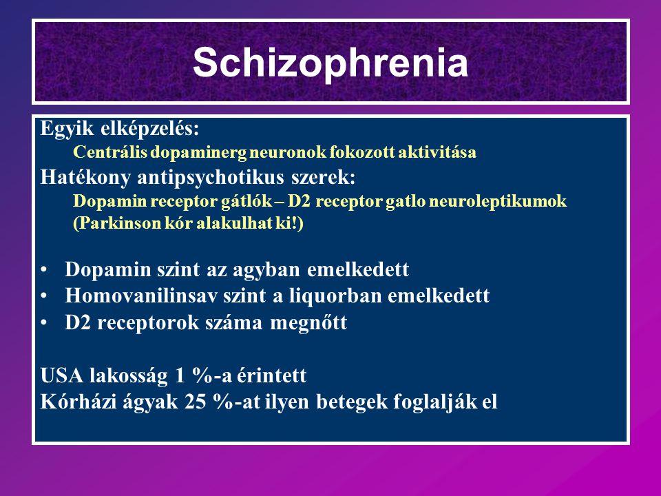 Schizophrenia Egyik elképzelés: Hatékony antipsychotikus szerek: