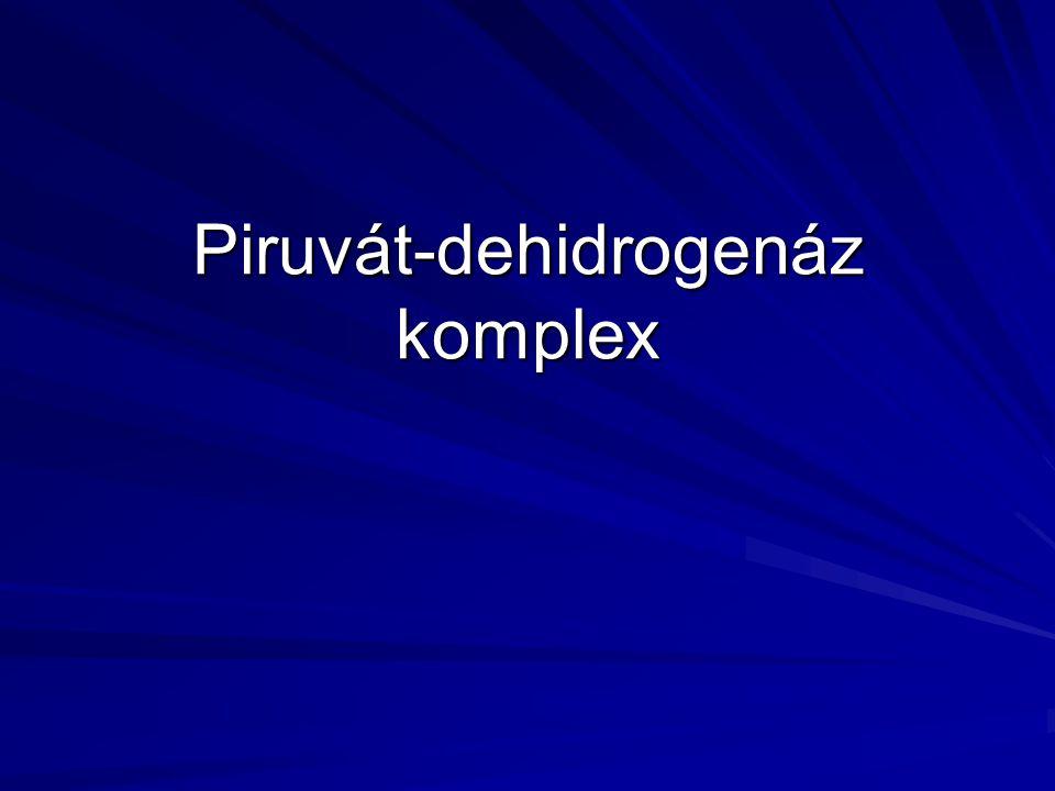 Piruvát-dehidrogenáz komplex