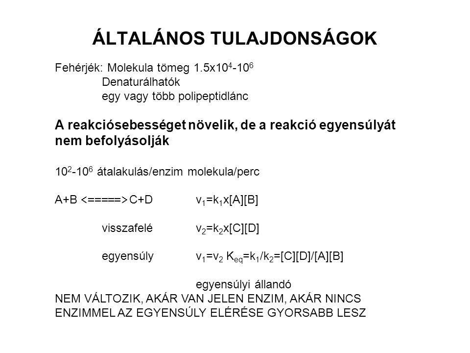 ÁLTALÁNOS TULAJDONSÁGOK
