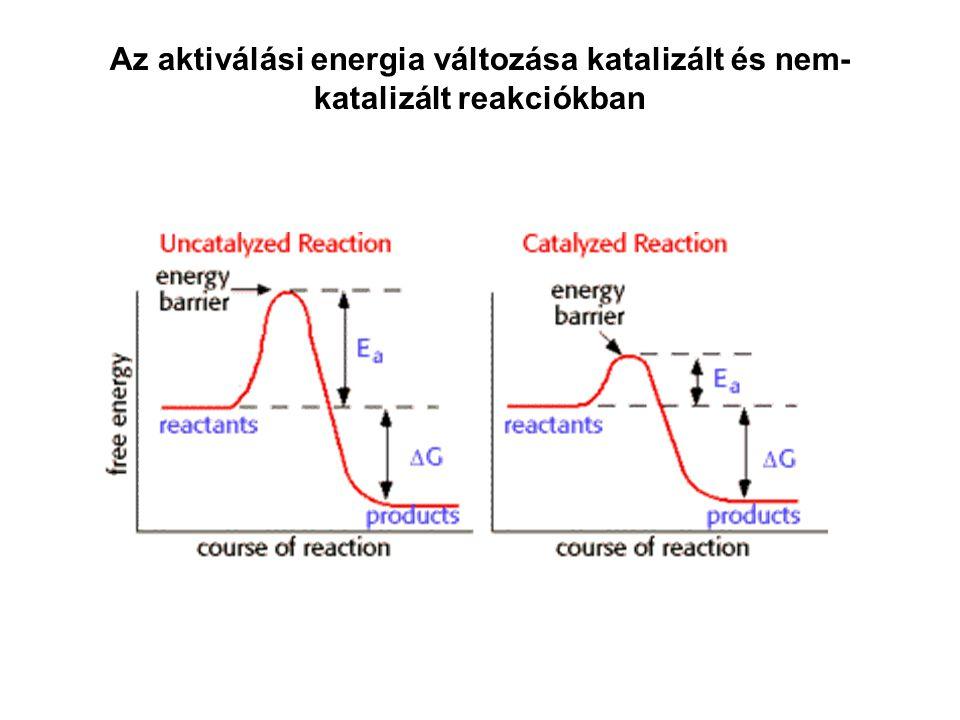 Az aktiválási energia változása katalizált és nem-katalizált reakciókban