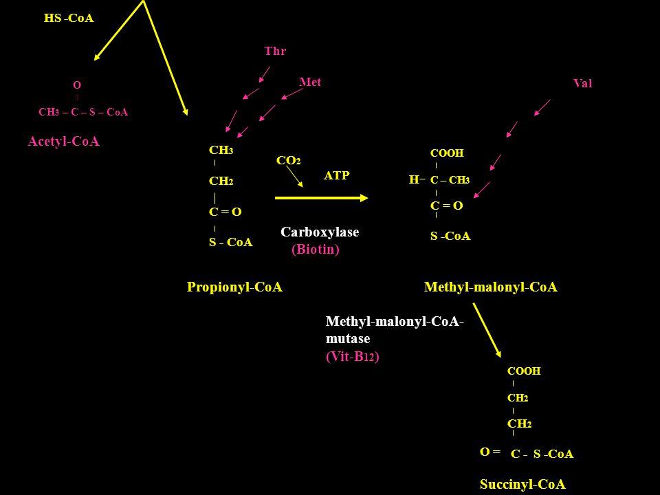 Propionyl-CoA Methyl-malonyl-CoA