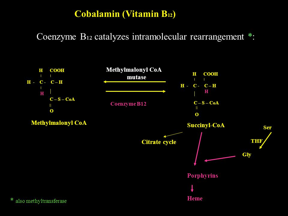 Coenzyme B12 catalyzes intramolecular rearrangement *: