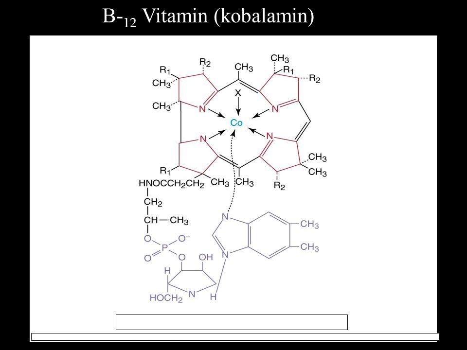 B-12 Vitamin (kobalamin)