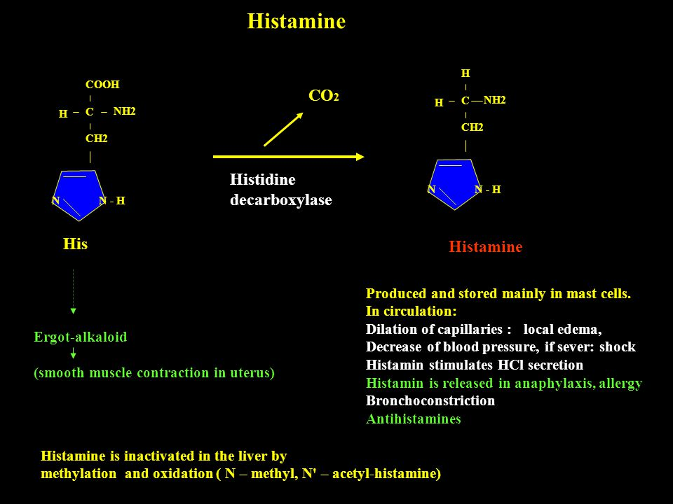 Histamine CO2 Histidine decarboxylase His Histamine