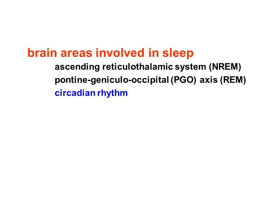brain areas involved in sleep