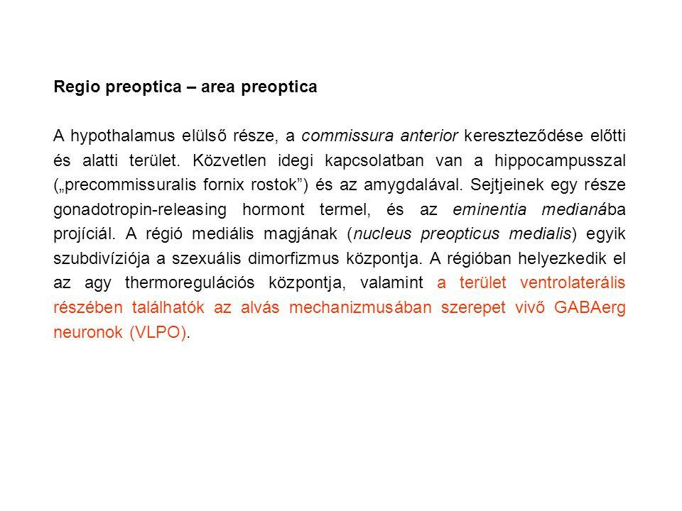 Regio preoptica – area preoptica