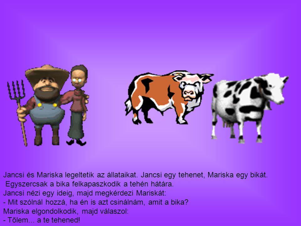 Jancsi és Mariska legeltetik az állataikat