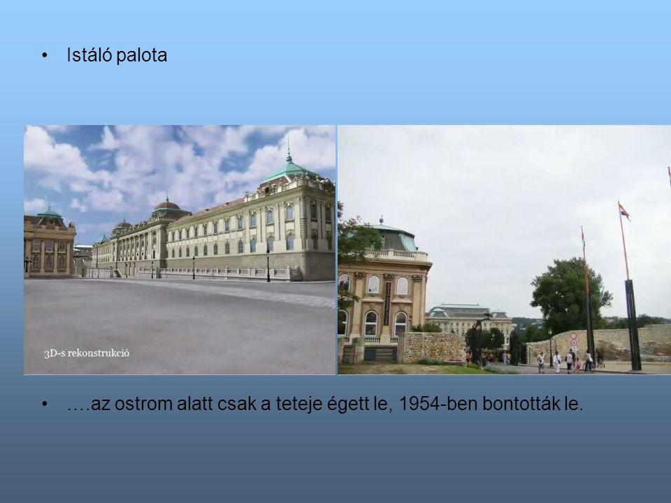 Istáló palota ….az ostrom alatt csak a teteje égett le, 1954-ben bontották le.