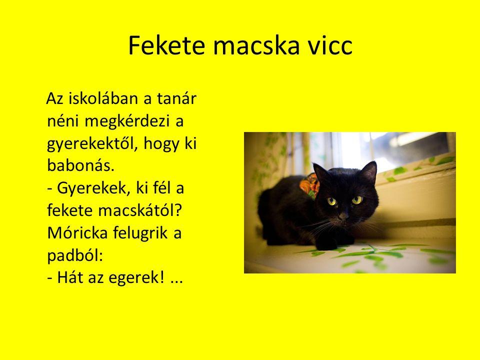 Fekete macska vicc