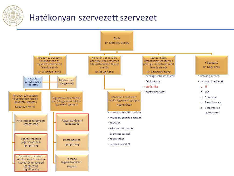 Hatékonyan szervezett szervezet