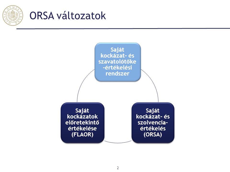 ORSA változatok Saját kockázat- és szavatolótőke-értékelési rendszer