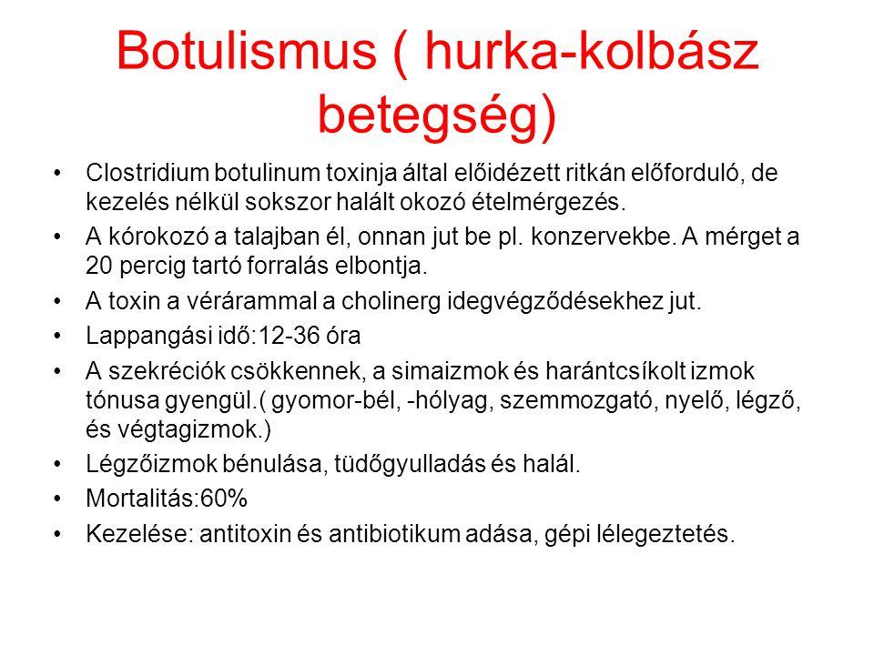 Botulismus ( hurka-kolbász betegség)