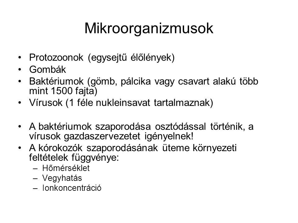 Mikroorganizmusok Protozoonok (egysejtű élőlények) Gombák