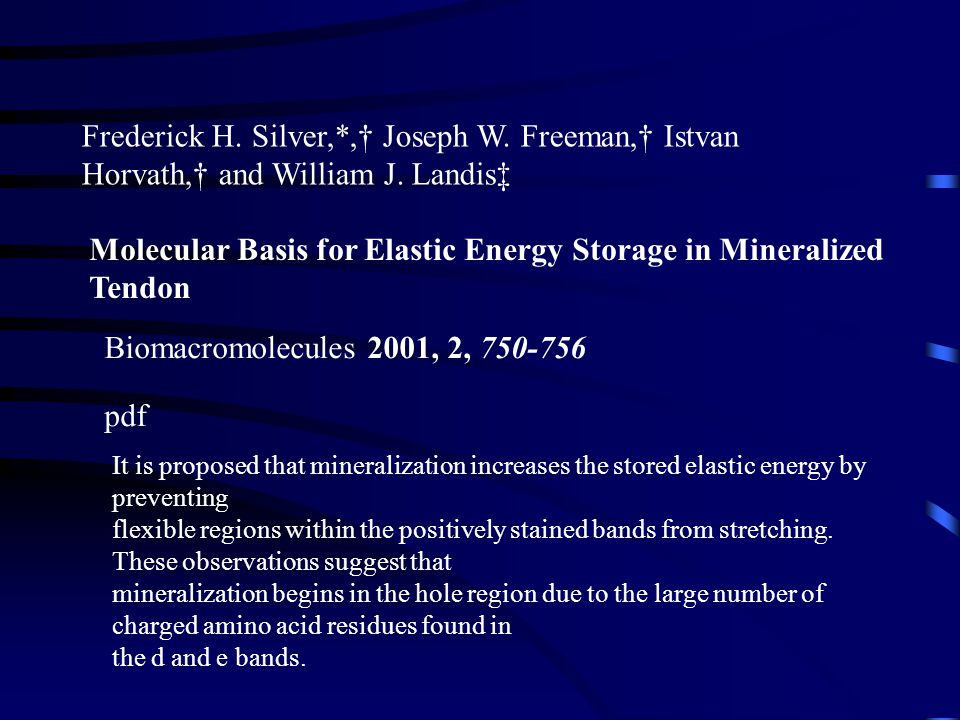 Molecular Basis for Elastic Energy Storage in Mineralized Tendon