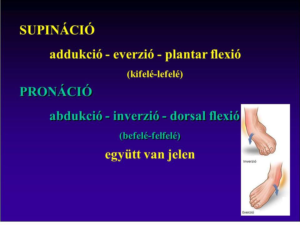 addukció - everzió - plantar flexió