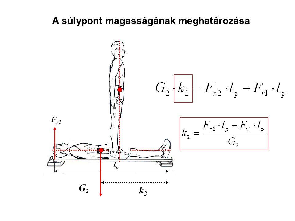 A súlypont magasságának meghatározása