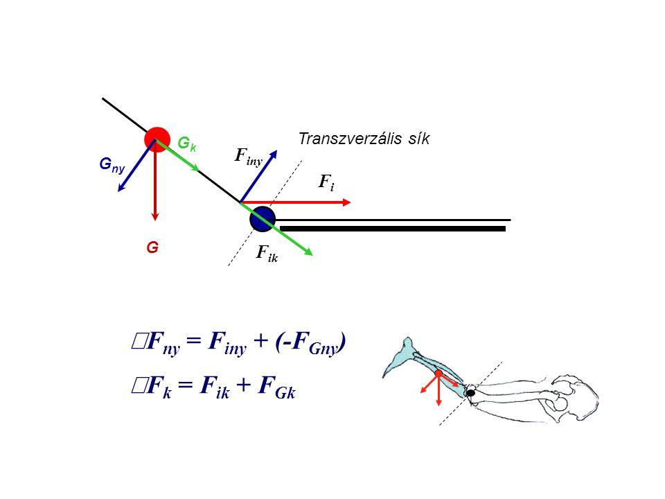 åFny = Finy + (-FGny) åFk = Fik + FGk Finy Fi Fik Transzverzális sík
