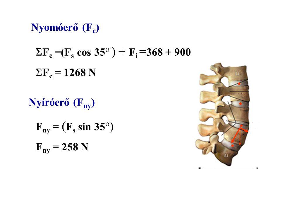 Nyomóerő (Fc) Fc =(Fs cos 35o ) + Fi =368 + 900. Fc = 1268 N. Nyíróerő (Fny) Fny = (Fs sin 35o)