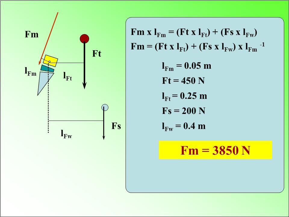 Fm = 3850 N Fm x lFm = (Ft x lFt) + (Fs x lFw) Fm