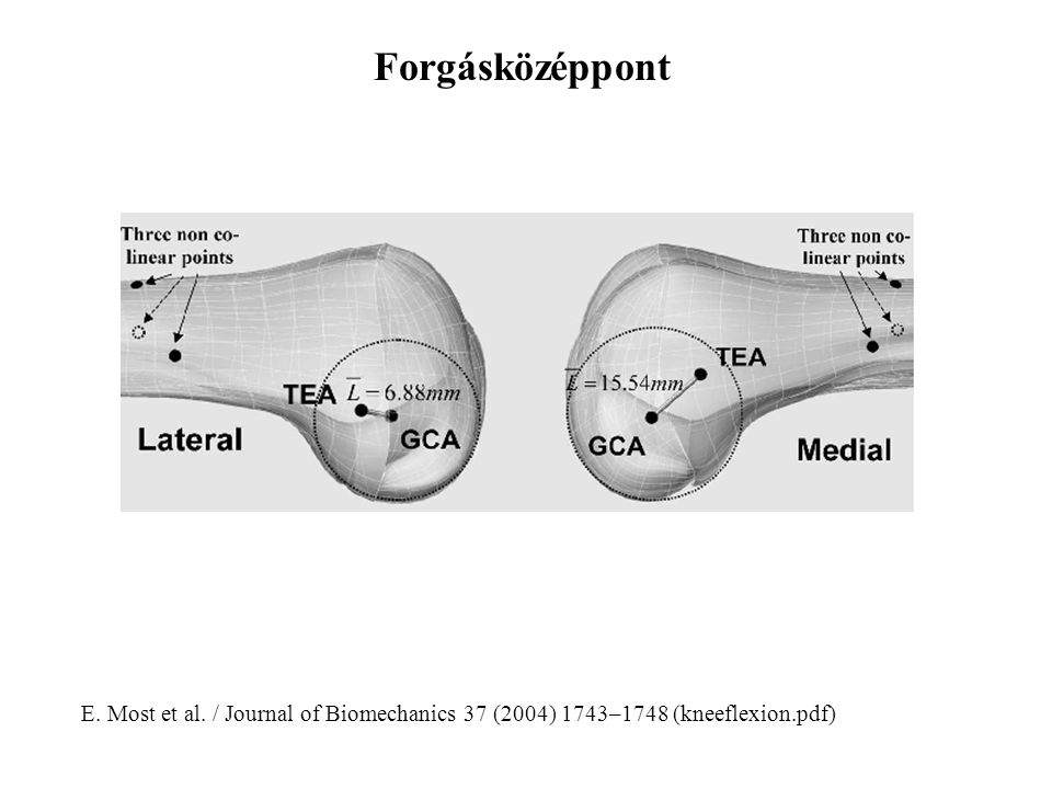 Forgásközéppont E. Most et al. / Journal of Biomechanics 37 (2004) 1743–1748 (kneeflexion.pdf)