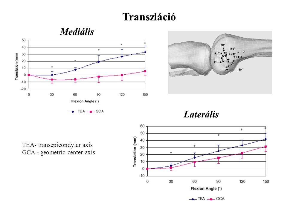 Transzláció Mediális Laterális TEA- transepicondylar axis