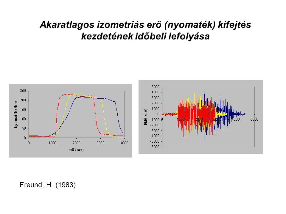 Akaratlagos izometriás erő (nyomaték) kifejtés kezdetének időbeli lefolyása