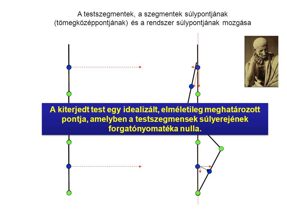 A testszegmentek, a szegmentek súlypontjának (tömegközéppontjának) és a rendszer súlypontjának mozgása
