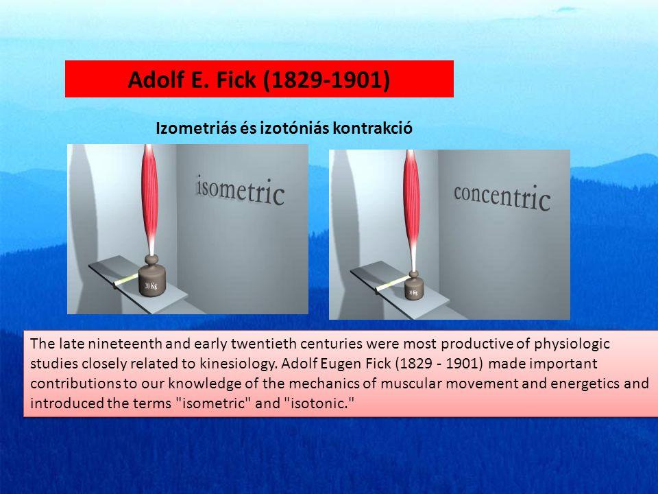 Adolf E. Fick (1829-1901) Izometriás és izotóniás kontrakció