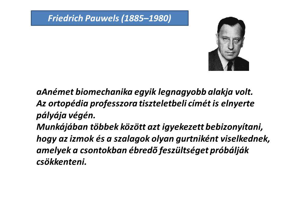Friedrich Pauwels (1885–1980) aAnémet biomechanika egyik legnagyobb alakja volt.